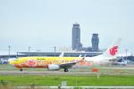 saoya_saodakeさんが、成田国際空港で撮影した中国国際航空 737-89Lの航空フォト(写真)