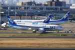 Koba UNITED®さんが、羽田空港で撮影した全日空 787-8 Dreamlinerの航空フォト(写真)