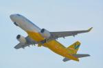 toyoquitoさんが、関西国際空港で撮影したバニラエア A320-214の航空フォト(写真)