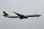 prado120さんが、成田国際空港で撮影したルフトハンザドイツ航空 A340-642の航空フォト(写真)