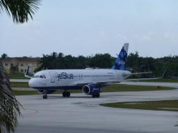 ケーキさんが、オーウェン ロバーツ国際空港で撮影したジェットブルー A320-232の航空フォト(飛行機 写真・画像)