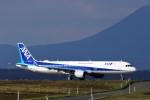 にしやんさんが、釧路空港で撮影した全日空 A321-211の航空フォト(写真)