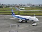 F.KAITOさんが、宮崎空港で撮影した全日空 A321-211の航空フォト(写真)
