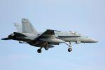 kazuchiyanさんが、岩国空港で撮影したアメリカ海兵隊 F/A-18C Hornetの航空フォト(写真)