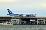 SHINYA787さんが、羽田空港で撮影した全日空 787-8 Dreamlinerの航空フォト(写真)