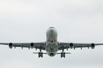 SHINYA787さんが、羽田空港で撮影したフィリピン航空 A340-313Xの航空フォト(写真)