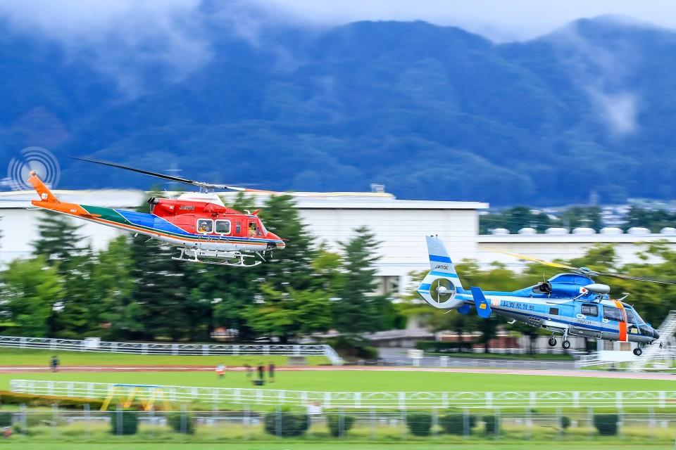 アミーゴさんの長野県警察 Eurocopter AS365/565 Dauphin 2/Panther (JA110E) 航空フォト