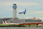 SHINYA787さんが、羽田空港で撮影した全日空 A320-211の航空フォト(写真)