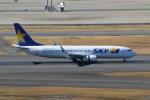 やつはしさんが、羽田空港で撮影したスカイマーク 737-8ALの航空フォト(写真)