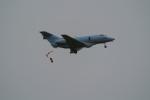 yashiraiさんが、浜松基地で撮影した航空自衛隊 U-125A(Hawker 800)の航空フォト(写真)