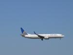 M.Ochiaiさんが、ダラス・フォートワース国際空港で撮影したユナイテッド航空 737-924の航空フォト(写真)