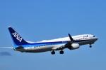 kiraboshi787さんが、高松空港で撮影した全日空 737-881の航空フォト(写真)