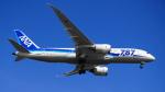 とっきーさんが、羽田空港で撮影した全日空 787-8 Dreamlinerの航空フォト(写真)