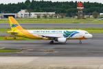 きゅうさんが、成田国際空港で撮影したセブパシフィック航空 A320-214の航空フォト(写真)