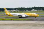 きゅうさんが、成田国際空港で撮影したスクート・タイガーエア 787-9の航空フォト(写真)