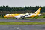 きゅうさんが、成田国際空港で撮影したスクート・タイガーエア 787-8 Dreamlinerの航空フォト(写真)