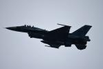 Duffさんが、浜松基地で撮影した航空自衛隊 F-2Aの航空フォト(写真)