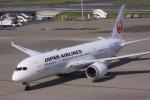 けいとパパさんが、羽田空港で撮影した日本航空 787-8 Dreamlinerの航空フォト(写真)