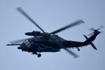 Kenny600mmさんが、浜松基地で撮影した航空自衛隊 UH-60Jの航空フォト(写真)
