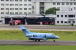 T.Sazenさんが、名古屋飛行場で撮影した航空自衛隊 U-125A (BAe-125-800SM)の航空フォト(写真)