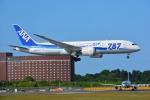 SKY☆101さんが、成田国際空港で撮影した全日空 787-8 Dreamlinerの航空フォト(写真)