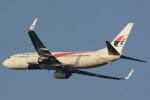 banshee02さんが、成田国際空港で撮影したマレーシア航空 737-8H6の航空フォト(写真)