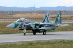 Kanarinaさんが、千歳基地で撮影した航空自衛隊 F-15DJ Eagleの航空フォト(写真)