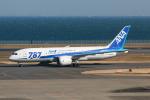 やつはしさんが、羽田空港で撮影した全日空 787-8 Dreamlinerの航空フォト(写真)