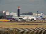 さゆりんごさんが、成田国際空港で撮影したピーチ A320-214の航空フォト(写真)