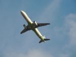 さゆりんごさんが、成田国際空港で撮影したエアプサン A321-231の航空フォト(写真)