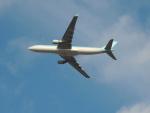 さゆりんごさんが、成田国際空港で撮影した大韓航空 A330-323Xの航空フォト(写真)