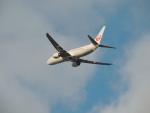 さゆりんごさんが、成田国際空港で撮影した日本航空 737-846の航空フォト(写真)