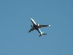 さゆりんごさんが、成田国際空港で撮影した厦門航空 737-75Cの航空フォト(写真)