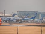 さゆりんごさんが、成田国際空港で撮影した全日空 787-8 Dreamlinerの航空フォト(写真)