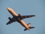 さゆりんごさんが、成田国際空港で撮影したマカオ航空 A320-232の航空フォト(写真)
