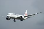 蒲田賢二さんが、成田国際空港で撮影した日本航空 787-8 Dreamlinerの航空フォト(写真)