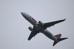 つっさんさんが、関西国際空港で撮影したティーウェイ航空 737-8HXの航空フォト(写真)