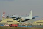 らひろたんさんが、茨城空港で撮影した航空自衛隊 C-130H Herculesの航空フォト(写真)