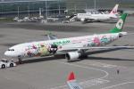 フレッシュマリオさんが、羽田空港で撮影したエバー航空 A330-302Xの航空フォト(写真)