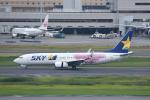 じゃまちゃんさんが、羽田空港で撮影したスカイマーク 737-86Nの航空フォト(写真)