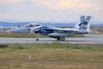 とろーるさんが、千歳基地で撮影した航空自衛隊 F-15DJ Eagleの航空フォト(写真)