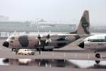 ノビタ君さんが、羽田空港で撮影したサウジアラビア王室空軍 C-130H Herculesの航空フォト(写真)