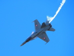 CのEのさんが、マイリンゲン空軍基地で撮影したスイス空軍の航空フォト(写真)