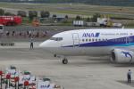 dianaさんが、熊本空港で撮影したANAウイングス 737-54Kの航空フォト(写真)