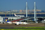 pikazouさんが、羽田空港で撮影したスカイマーク 737-86Nの航空フォト(写真)