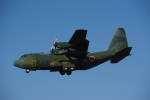 chappyさんが、岐阜基地で撮影した航空自衛隊 C-130H Herculesの航空フォト(写真)
