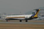 chappyさんが、伊丹空港で撮影した日本エアシステム MD-81 (DC-9-81)の航空フォト(写真)
