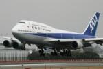chappyさんが、伊丹空港で撮影した全日空 747-481(D)の航空フォト(写真)