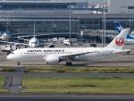 51ANさんが、羽田空港で撮影した日本航空 787-8 Dreamlinerの航空フォト(写真)