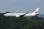resocha747さんが、福岡空港で撮影した日本航空 737-846の航空フォト(写真)